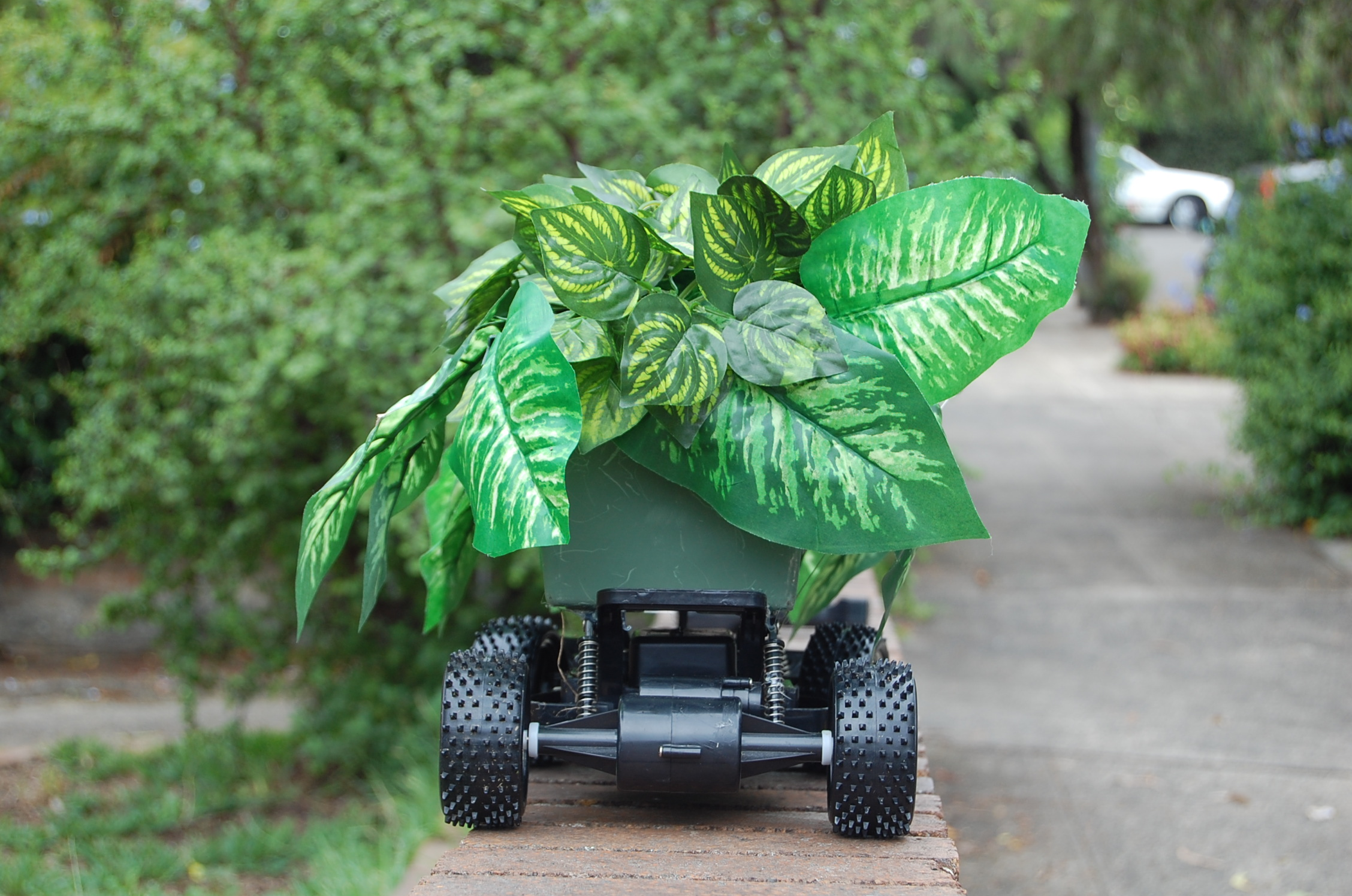 Remote Control Gardern (detail)550cm x 33cm, plastic foliage, plastic planter, RC vehicle)